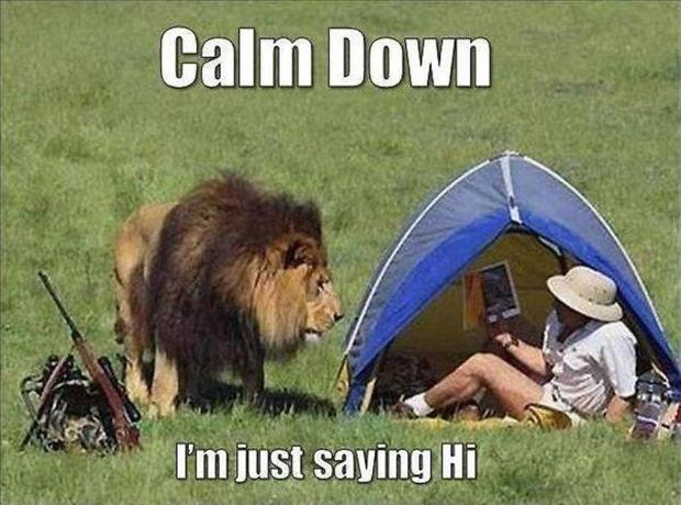 Calm Down - Funny pictures