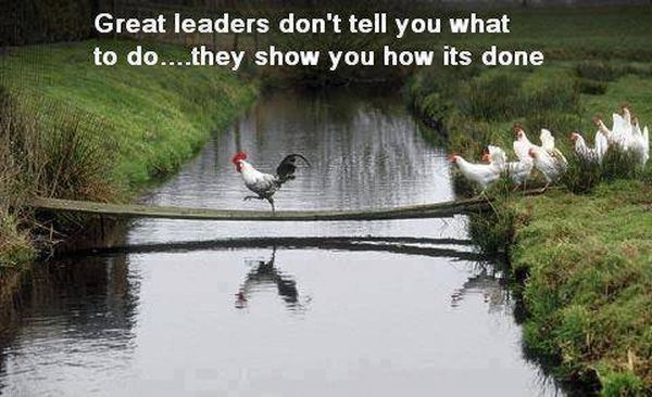 Great Leaders - Funny pictures