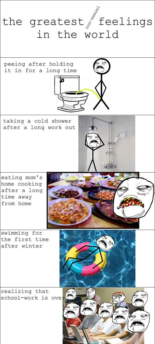 Greatest Feelings In The World - Funny pictures