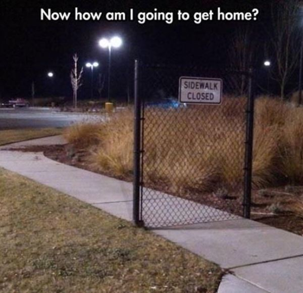 Now How Am I Going To Get Home? - Funny pictures