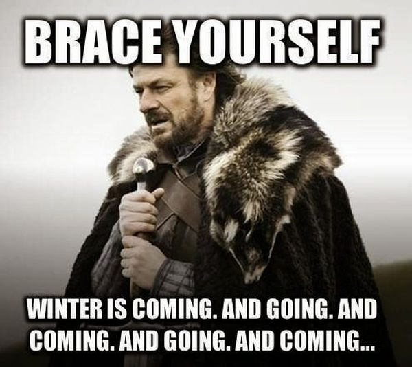 Brace Yourself - Funny pictures