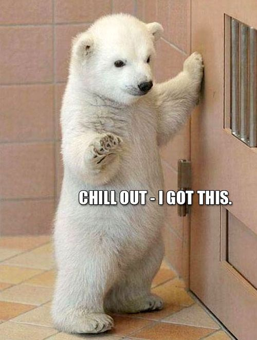 Chill Out - Funny pictures