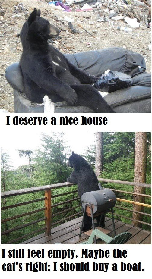 I Deserve A Nice House... - Funny pictures
