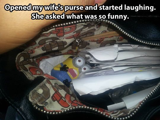 Opened Wife's Purse And Started Laughing - Funny pictures
