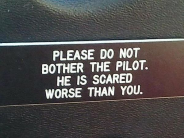 Please Don't Bother The Pilot - Funny pictures