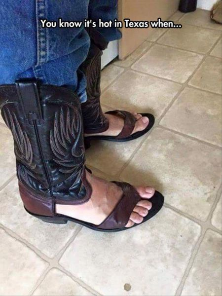 You Know It's Hot In Texas When... - Funny pictures