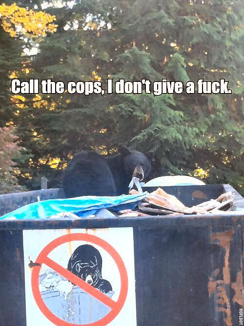 Call The Cops - Funny pictures