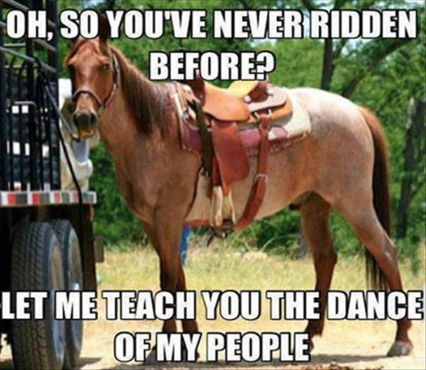 So You've Never Ridden Before? - Funny pictures