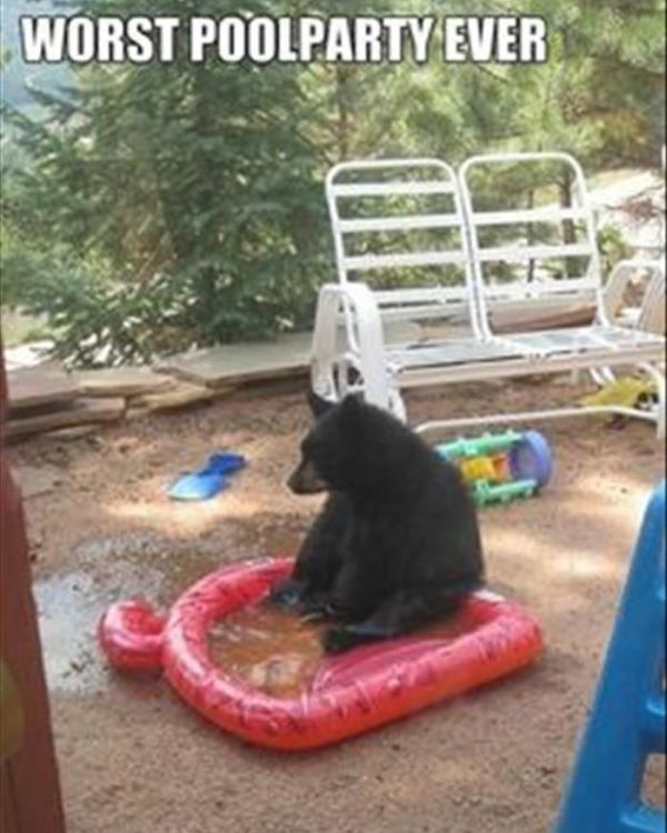 The Worst Pool Party Ever - Funny pictures
