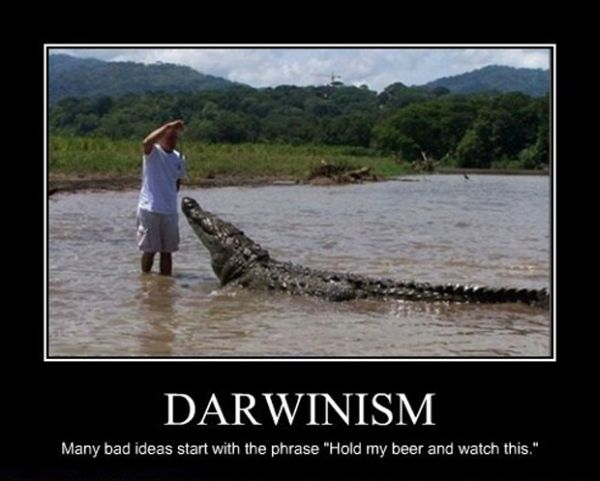 Darwinism - Funny pictures