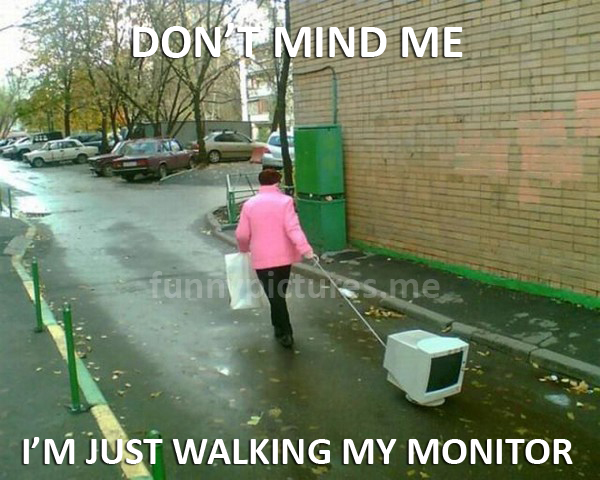 Don't Mind Me... - Funny pictures