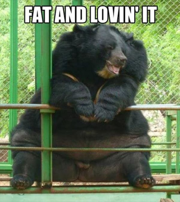 Fat And Lovin' It - Funny pictures