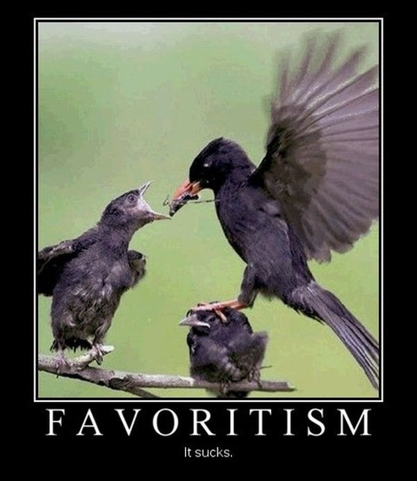 Favoritism - Funny pictures