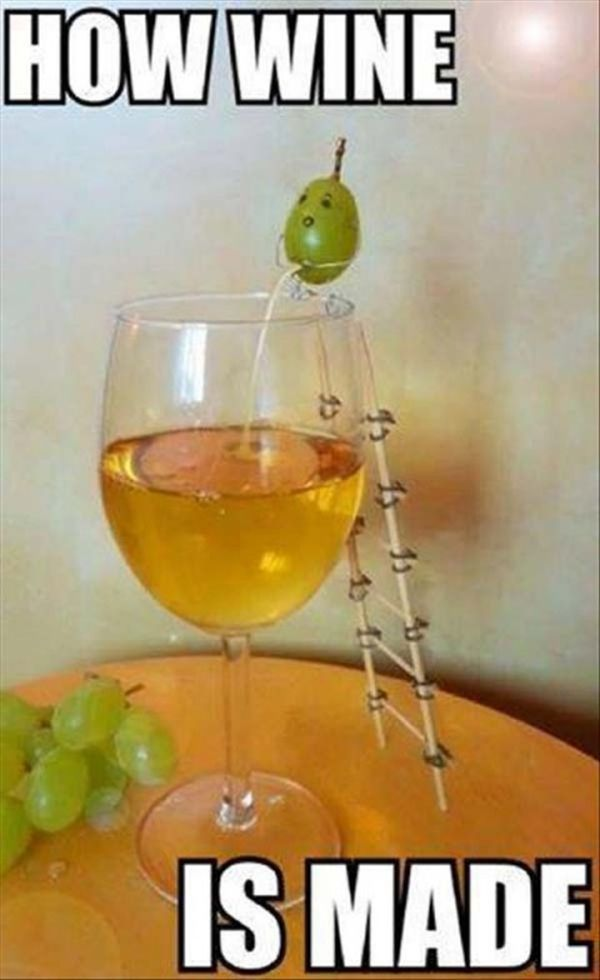 How Wine Is Made - Funny pictures