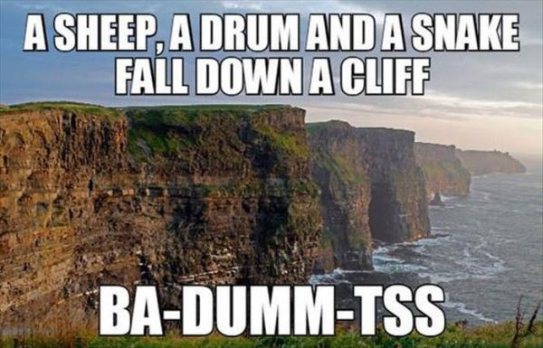 A Sheep, A Drum And A Snake Fall Down A Cliff - Funny pictures