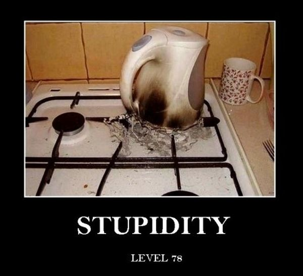 Stupidity - Funny pictures