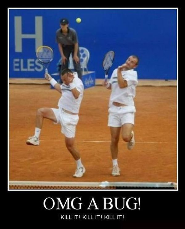 OMG A Bug! - Funny pictures