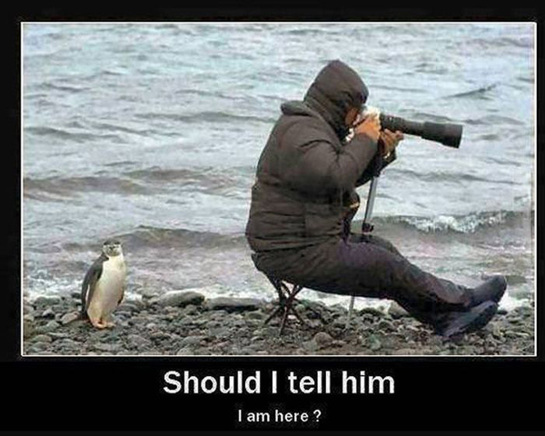 Should I Tell Him? - Funny pictures