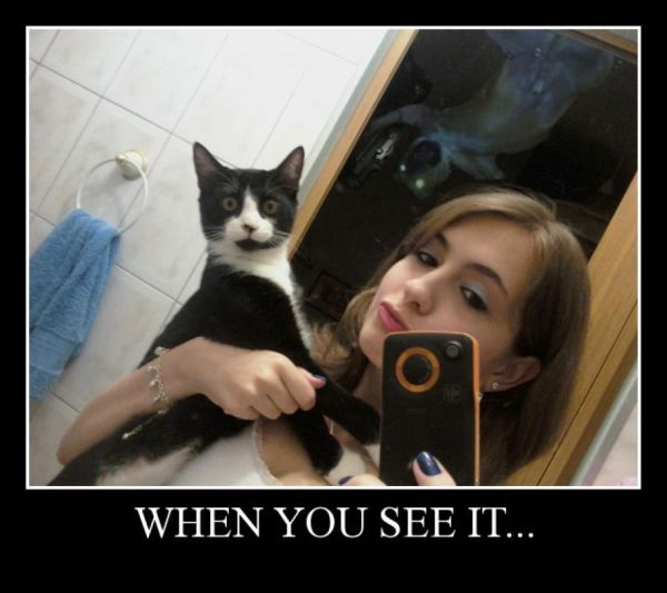 When You See It... - Funny pictures