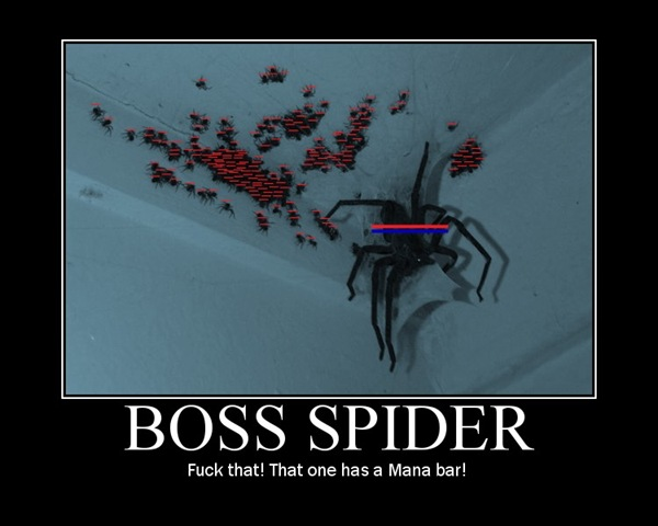 Boss Spider - Funny pictures