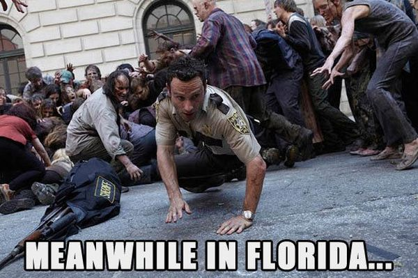 Meanwhile In Florida - Funny pictures