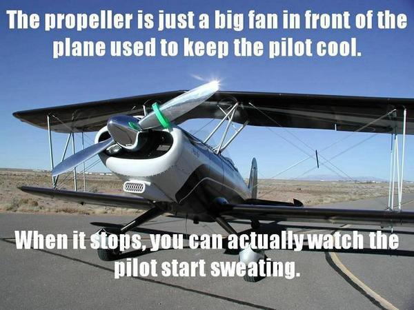 The Propeller Is Just A Big Fan - Funny pictures