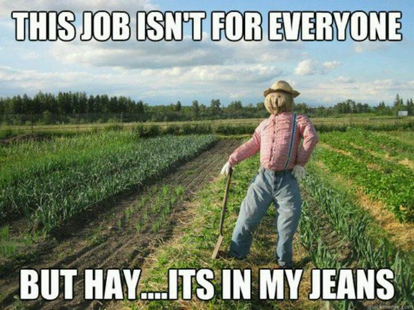 This Job Isn't For Everyone - Funny pictures
