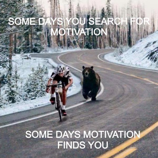 Motivation... - Funny pictures