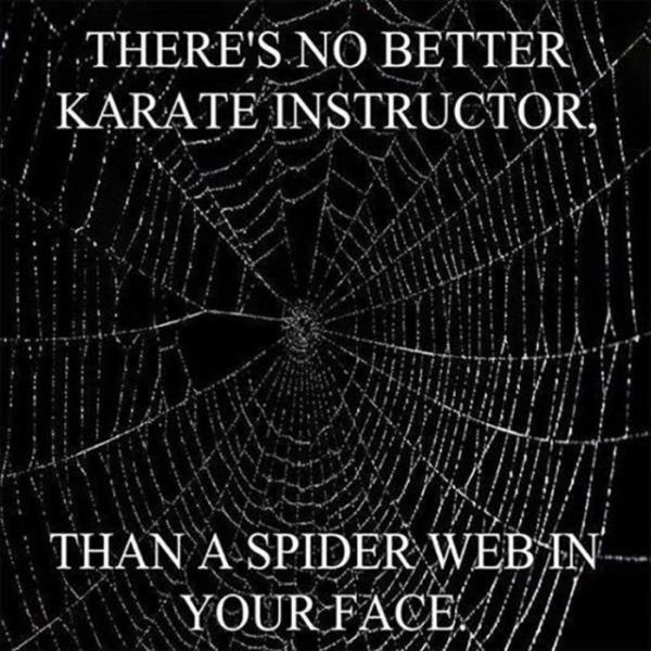 The Best Karate Instructor - Funny pictures