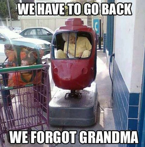 We Have To Go Back - Funny pictures
