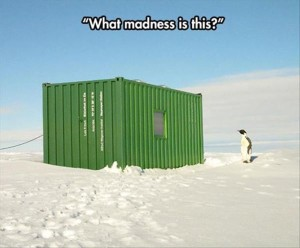 What Madness Is This? - Funny pictures